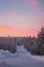 Snow Road and Lapland sunset by Tim Topping