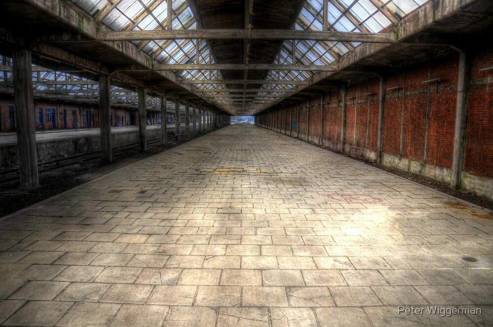 Abandoned trainstation II by Peter Wiggerman