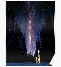 Calvin And Hobbes In The Night Poster