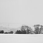 Winter Snowfall 2013 by Billy Hodgkins