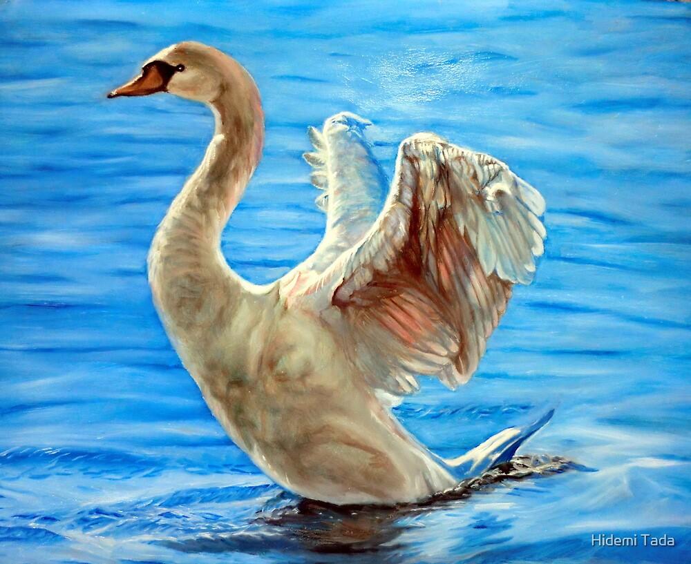 white swan by Hidemi Tada