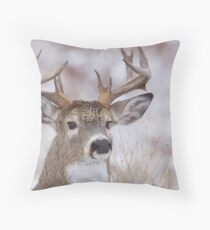 White-tailed Buck Deer with non-typical antlers, winter portrait Throw Pillow