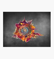 Flower Power Fractal Art Photographic Print