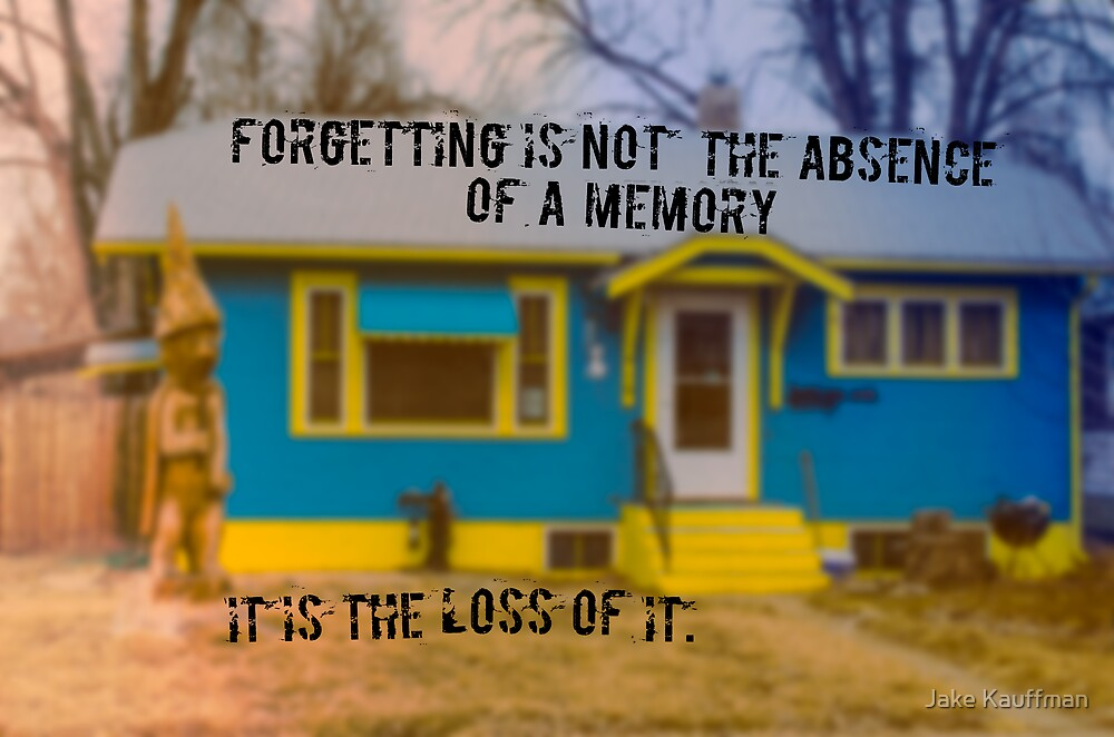 Forgetting by Jake Kauffman