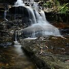Let the water flow by peter  jackson