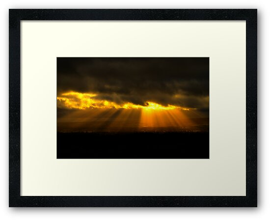 Golden Otley by Maria Tzamtzi