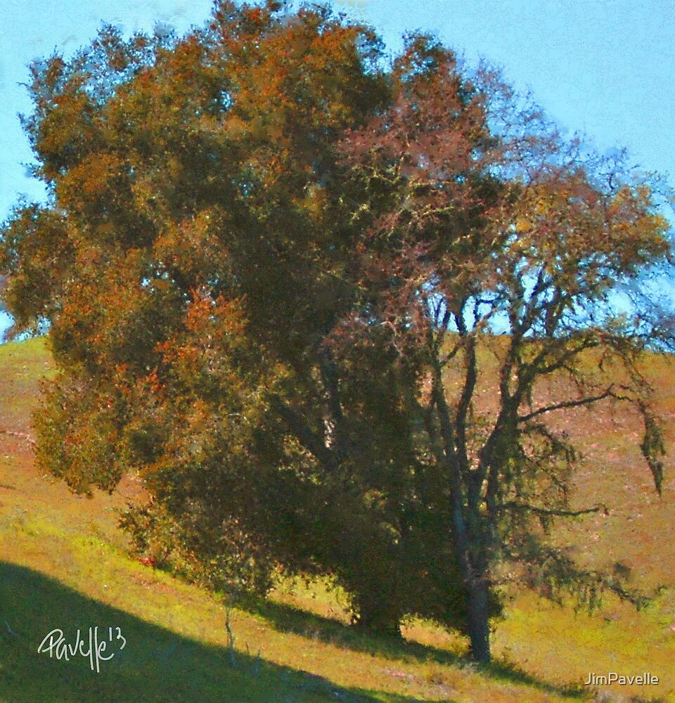 Rust Oak by JimPavelle