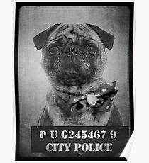 Bad Dog Poster