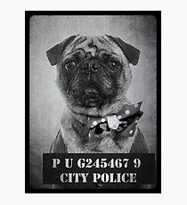 Bad Dog Photographic Print