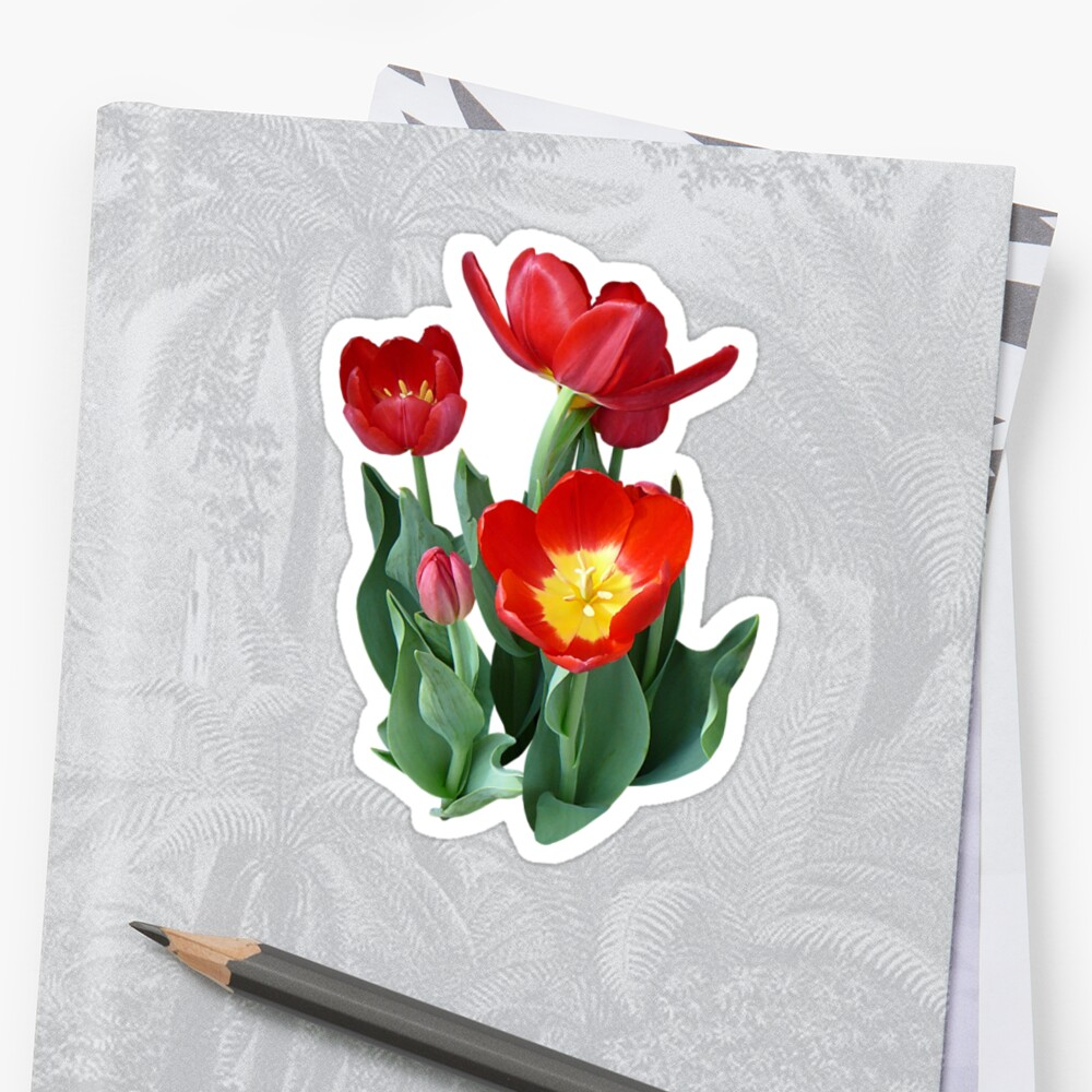 Bright Red Tulips by Susan Savad
