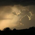 Mother Nature's Fury by Christine Frydenborg Dargon