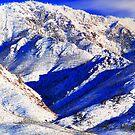 Cobalt Winter by Arla M. Ruggles