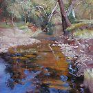 'Dabyminga Creek - Tallarook' by Lynda Robinson