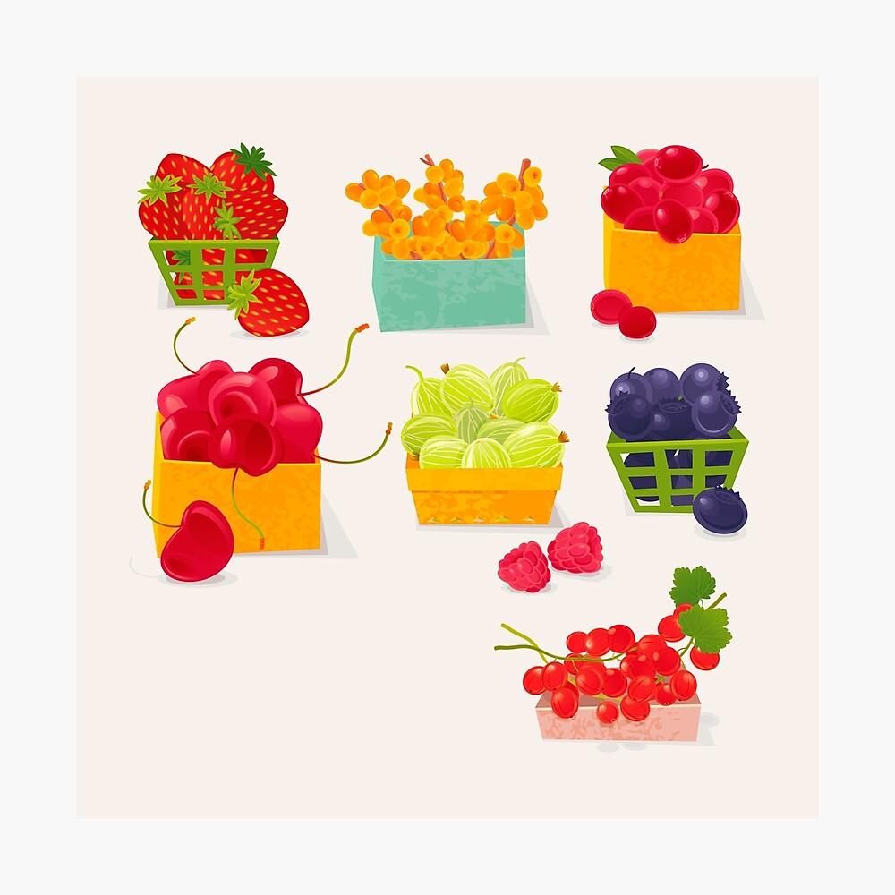 Sweet Berries Photographic Print
