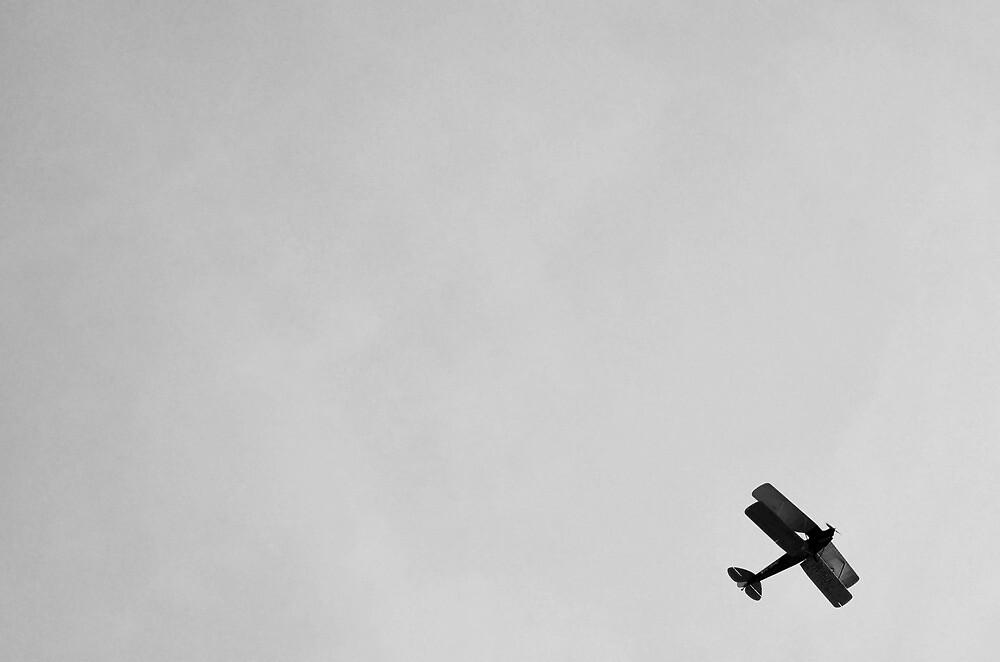 Bi-Wing Plane by Tom Blanche