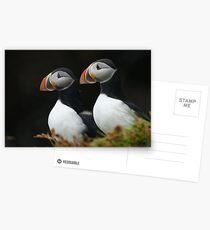Companionship Postcards