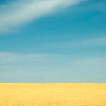 Simplicity by ajlphotography