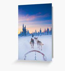 Husky Sledge, Lapland Greeting Card
