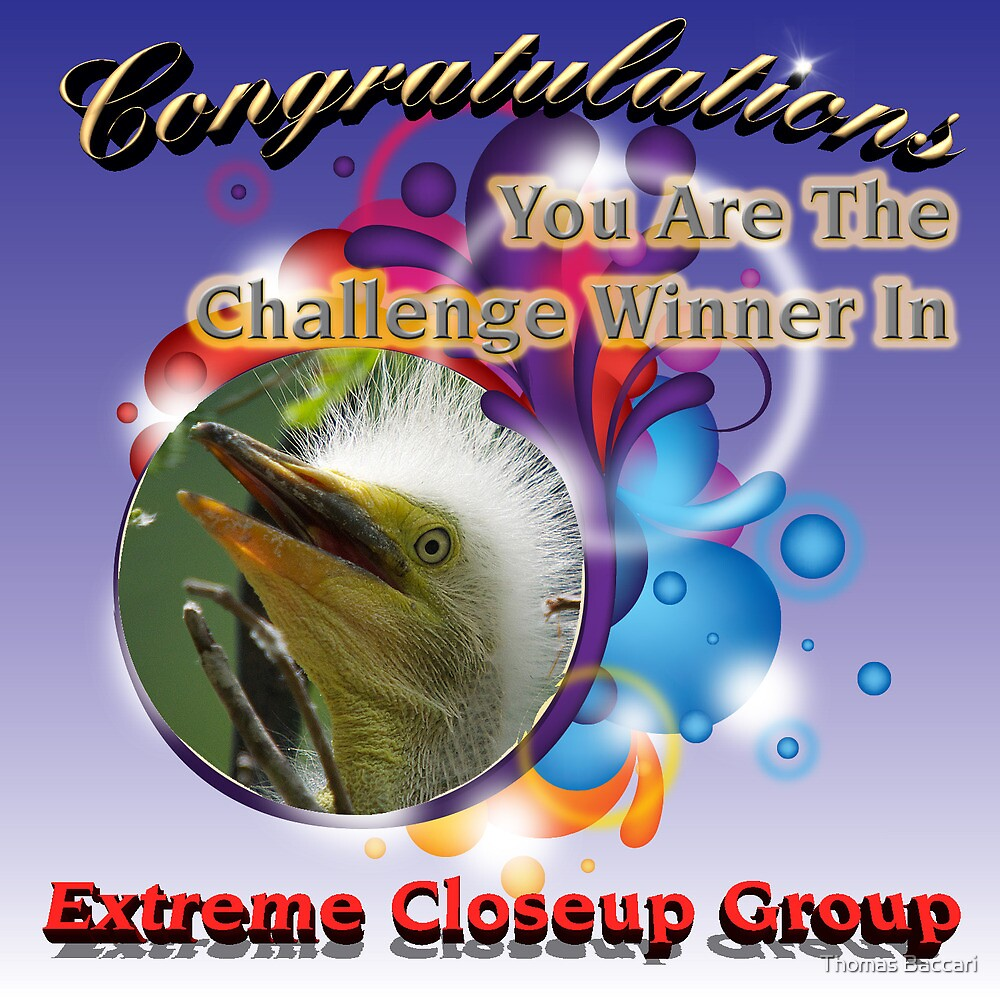 Extreme Closeup Group Banner by TJ Baccari Photography