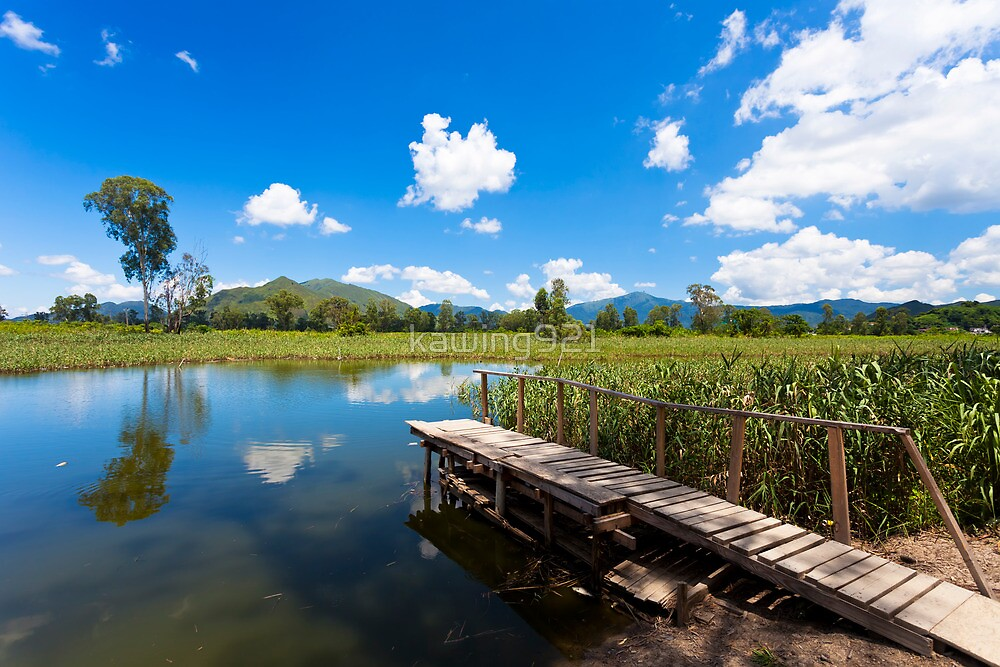 Wetland pond and wooden bridge in a clear sky by kawing921
