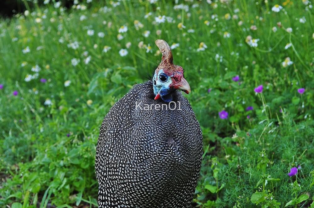 Guinea fowl friend by Karen01