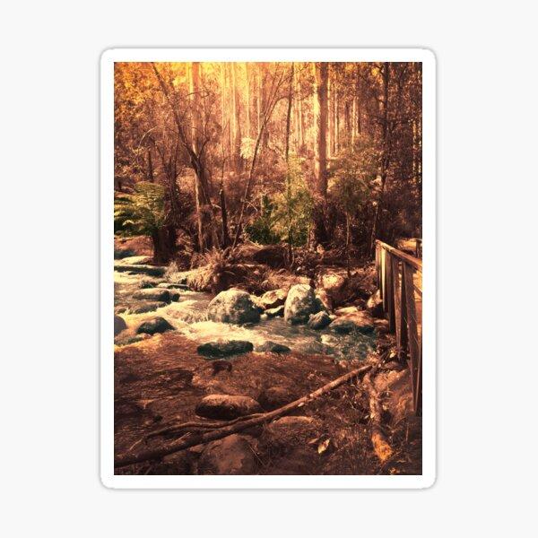 Toorongo River, Noojee Sticker