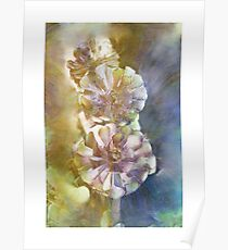 """""""Red & Green Aeonium"""" Poster"""