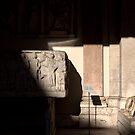 Praetorian Guard by Alfredo Estrella