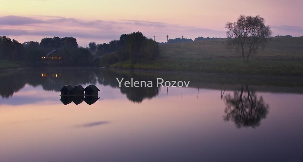 Countryside Serenade  by Yelena Rozov