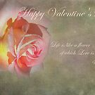 Happy Valentine's Day - Card by jules572