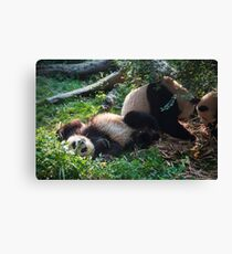 Bamboo Overload Canvas Print