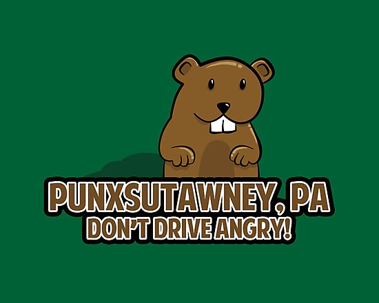 Don't Drive Angry by fishbiscuit