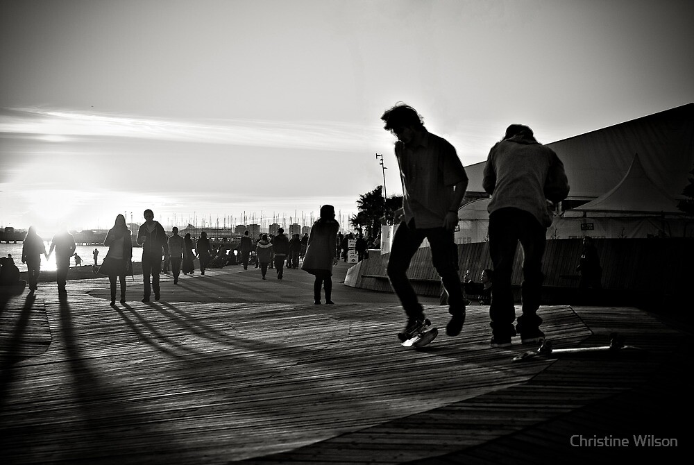 Skater Boys by Christine Wilson