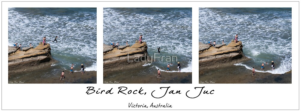 Bird Rock, Jan Juc by LadyFran