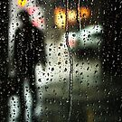 Waiting out the Rain by Ursula Rodgers Photography