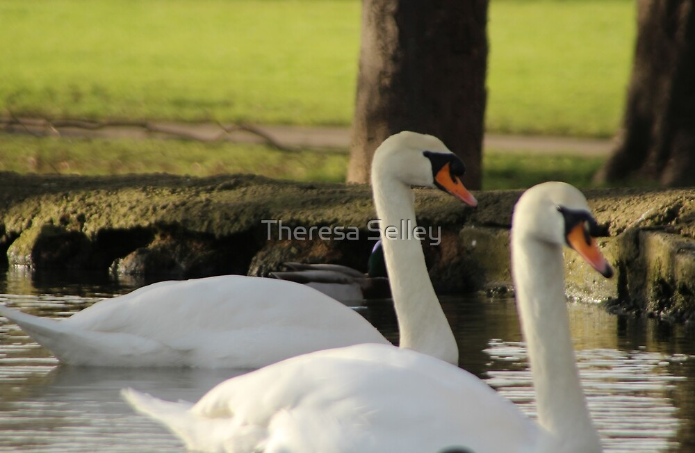 Together by Theresa Selley