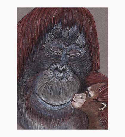 Orangutangoed! Photographic Print