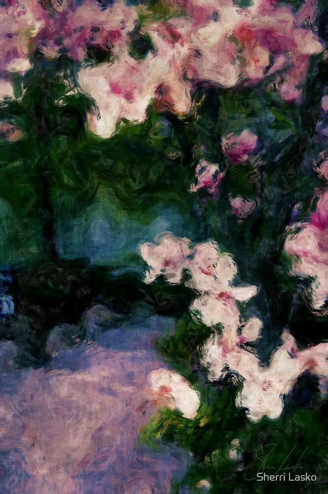 blossom path by Sherri Lasko
