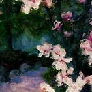 blossom path for iphone by Sherri Lasko