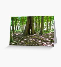 Native trees in light Greeting Card