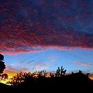 backyard sunrise by fazza