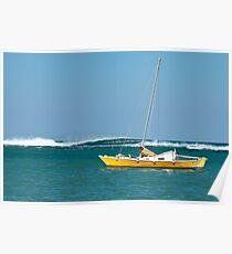 The Catamaran & The Cormorants Poster