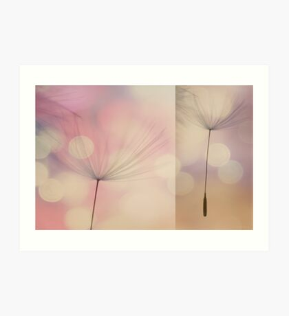 Dandelion Diptych #1 Art Print