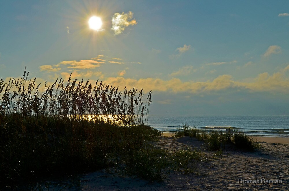 Beautiful Morning at Huntington State Park Beach by TJ Baccari Photography