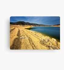 lake shore Canvas Print