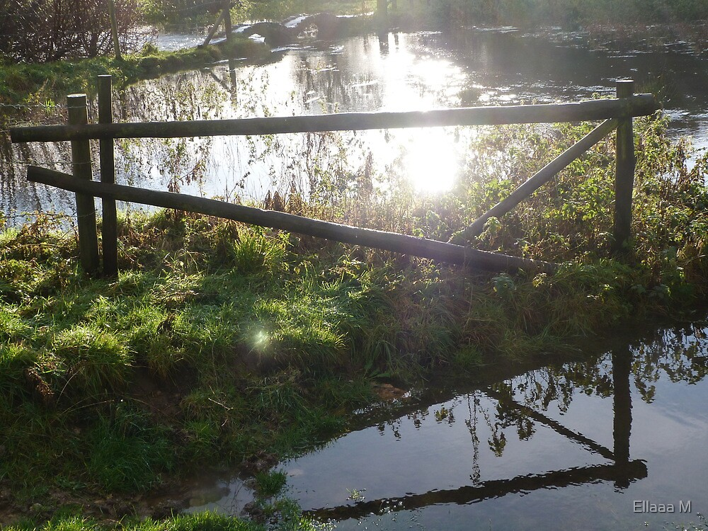 Sunlight on water - reflections by Ellaaa M