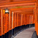The Tori gates in Japan by Cebas