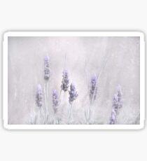 Lavender Essence Sticker
