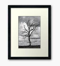 Dead tree and two birds Framed Print