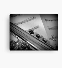 Flugel Music Canvas Print